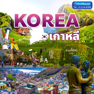 South Korea Tour / Travel